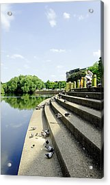 The Steps Of Derby River Gardens Acrylic Print by Rod Johnson