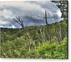 Acrylic Print featuring the photograph The Storm by Raymond Earley