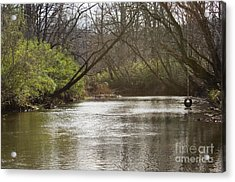 Acrylic Print featuring the photograph The Swimming Hole by Michael Waters