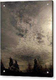 The Tree Cloud Acrylic Print by Barbara Stirrup