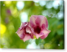 The Two Together. Garden Of Dreams Acrylic Print by Jenny Rainbow