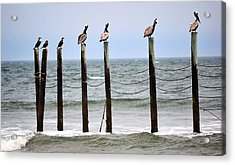 The Watchers Acrylic Print