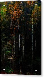 The Way To Glow From The Darkness Acrylic Print by Jenny Rainbow