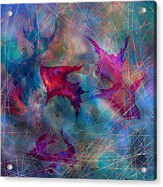 The Webs Of Life Acrylic Print by Rachel Christine Nowicki