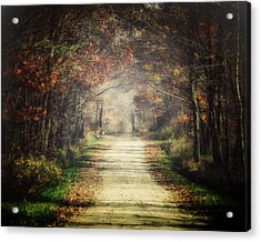 The Winding Road Acrylic Print by Lisa Russo
