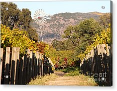 The Windmill At The Old Vineyard Acrylic Print by Wingsdomain Art and Photography