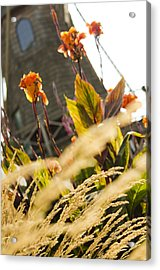 Acrylic Print featuring the photograph The Windmill by MaryJane Armstrong