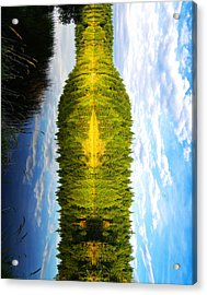 The Wine Bottle Acrylic Print by Cary Ligon