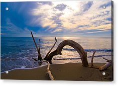 The Wooden Arch Acrylic Print by Marco Busoni