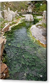 Acrylic Print featuring the photograph Thermopolis Hot Springs by Geraldine Alexander