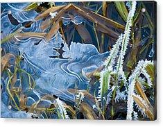 Thin Ice Acrylic Print by Rob Hemphill