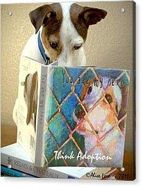 Think Adoption Acrylic Print by Alice Lero