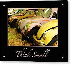 Think Small Acrylic Print by Nancy Greenland