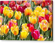 Think Spring Acrylic Print by Suni Roveto