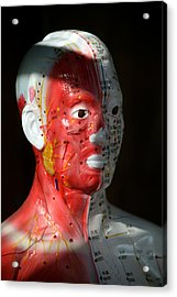 This Is Hurting Acrylic Print by Jez C Self