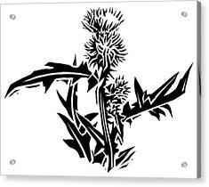 Thistle, Lino Print Acrylic Print by Gary Hincks