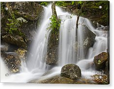Thompson Falls - Pinkham Notch New Hampshire Usa Acrylic Print by Erin Paul Donovan