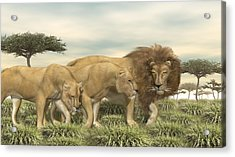Acrylic Print featuring the digital art Three African Lions by Walter Colvin