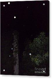 Three And A Tree Acrylic Print