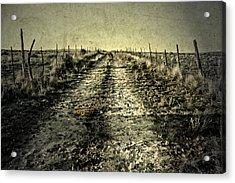 Three Flower Road Acrylic Print