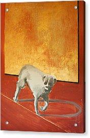 Three Legged Dog Acrylic Print by Jea DeVoe