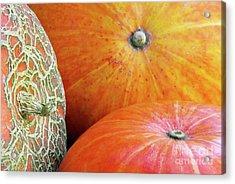 Three Pumpkins Acrylic Print by Carlos Caetano