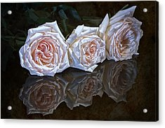 Three Roses Still Life Acrylic Print