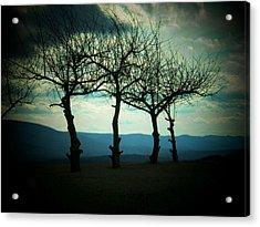 Three Trees Acrylic Print by Joyce Kimble Smith