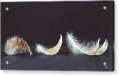 Three Wishes Acrylic Print by Elena Kolotusha