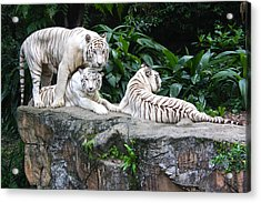 Threesome Acrylic Print