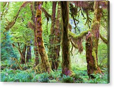 Through Moss Covered Trees Acrylic Print by Heidi Smith