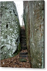 Acrylic Print featuring the photograph Through The Crack by Paul Mashburn