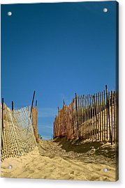 Through The Dunes Acrylic Print by Susan Elise Shiebler