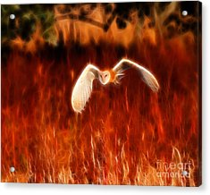 Through The Fire Acrylic Print by Beth Sargent