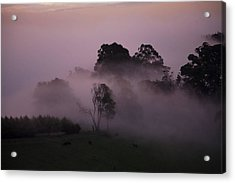 Through The Mist Acrylic Print