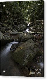 Acrylic Print featuring the pyrography Through The Rocks. by Gary Bridger