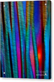 Through The Trees Acrylic Print by Judi Bagwell