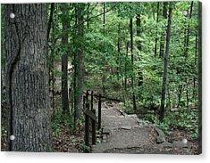Through The Woods Acrylic Print by CGHepburn Scenic Photos