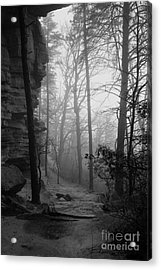 Through These Woods A Path Was Made Acrylic Print