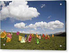 Tibetan Prayer Flags In A Field Acrylic Print by David Evans