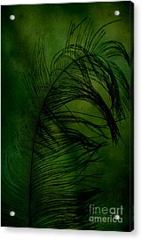 Acrylic Print featuring the photograph Tickled Green by Robin Dickinson