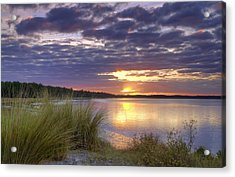 Tidal Estuary Acrylic Print by Phill Doherty