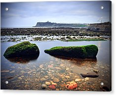 Tide Out Acrylic Print by Svetlana Sewell