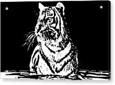 Tiger 1 Acrylic Print by Lori Jackson