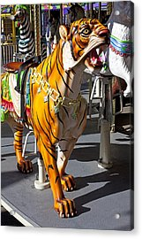 Tiger Carousel Ride Acrylic Print by Garry Gay