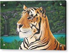 Tiger Falls Acrylic Print by Jeffrey Oldham