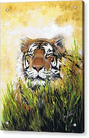 Tiger In Grass Acrylic Print