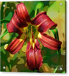 Tiger Lily Acrylic Print by Cindy Manero