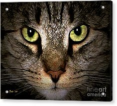 Acrylic Print featuring the digital art Tiger Tiger by Dale   Ford