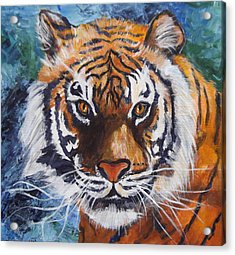 Tiger Acrylic Print by Trudy Morris